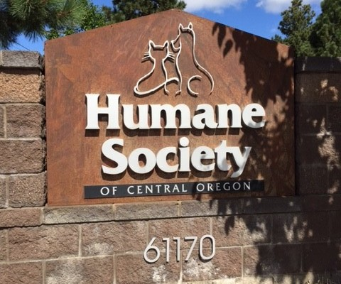 human society picture 1